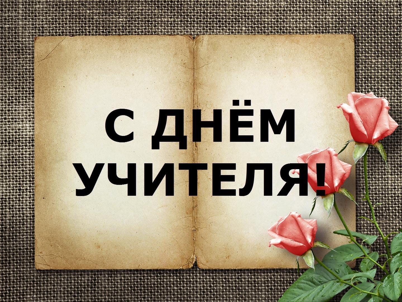 метелица димитровград каталог верхней одежды